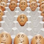Cum recunoști un ou vechi? Învață să faci testul oului plutitor