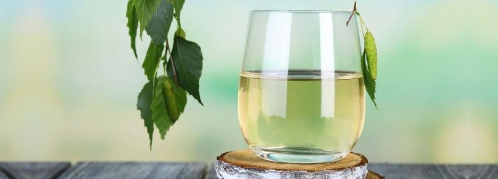 Cura cu sevă de mesteacăn ține trei săptămâni, iar esența poate fi cumpărată sau obținută direct din arbore printr-o metodă simplă