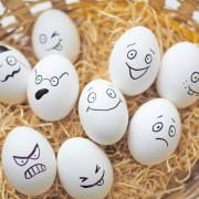 EXCLUSIV| Ouă îmbogăţite cu seleniu pentru consum. Beneficii reale sau marketing pentru un produs obişnuit?