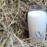 România a importat cu 9,84% mai mult lapte decât în anul 2014