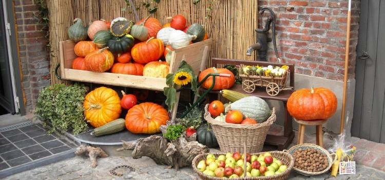 Bursa legumelor și fructelor din România se înființează la finalul lunii. Stocurile cultivatorilor transmise în timp real în cea mai mare piață online