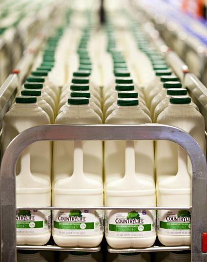 milk-supermarket-large