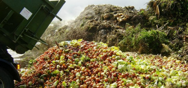 Risipa alimentară, luată în sfârșit în serios și de retailerii autohtoni. România aruncă peste două milioane de tone de mâncare anual!