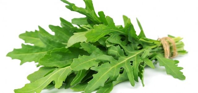 Rucola proaspătă la tine acasă tot timpul anului sau cum să crești singur cea mai sănătoasă salată. Un cultivator te învață toate secretele