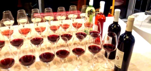 """VIDEO: Gabriel Roceanu ne dezvăluie secretele terroir-ului: cum strugurii şi vinul păstrează """"amprenta"""" solului"""