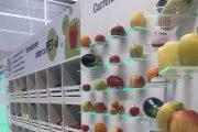 Magazinele din România unde poți plăti fructele și legumele cu sticle de plastic